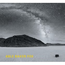 ABLE BAKER FOX - Voices -...
